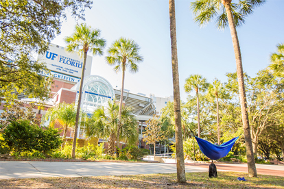 Student in hammock outside Ben Hill Griffin Stadium